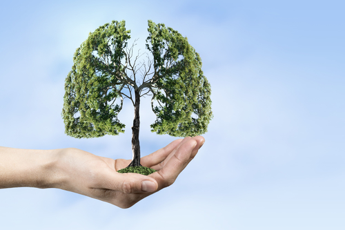 Ecology and health concept